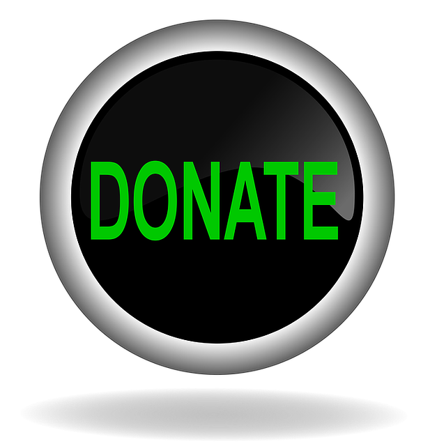 donate-1426736_640